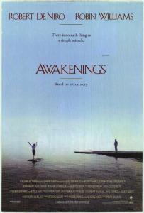 Despertares-